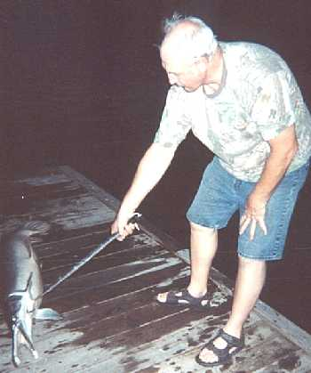 Carl Gottselig caught this Gar 5-6-02